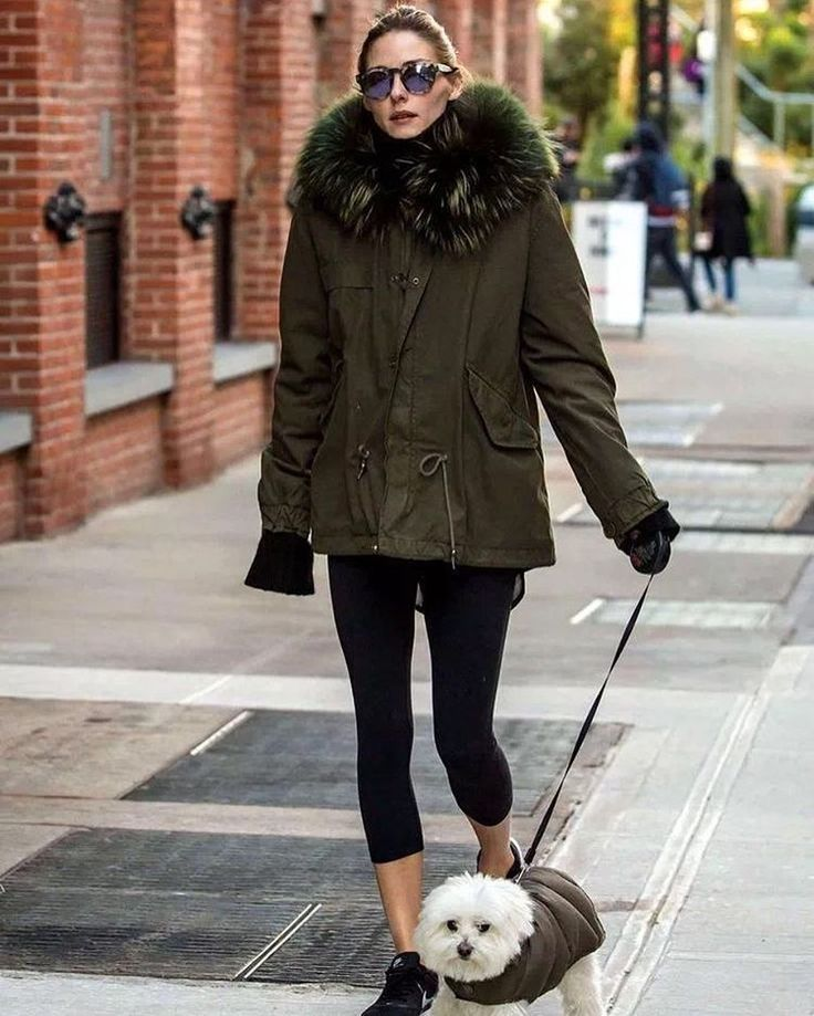 Olivia Palermo, walking doggie, nice fur parka  Meifng military fur lined parka