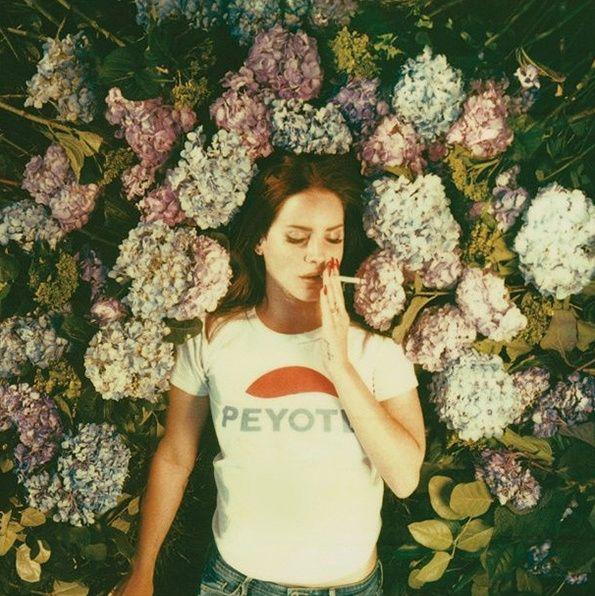 Neil Krug's excellent series of photographs of Lana del Rey