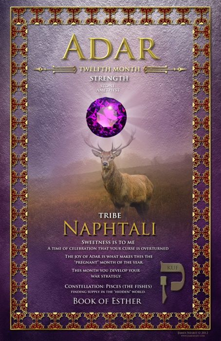 Twelfth Biblical Month of Adar, Strength, The Tribe of Naphtali, Stone: Amethyst