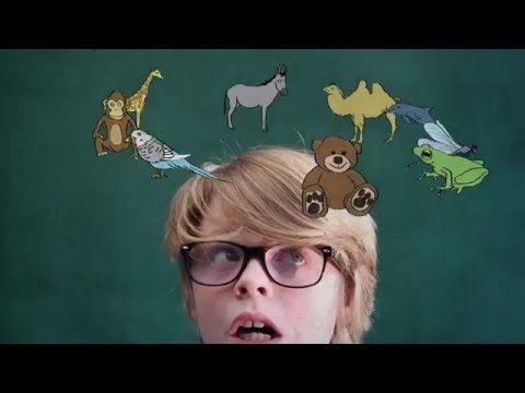 Snapje? ft. Lucas Hamming - Geheugenpaleis - YouTube
