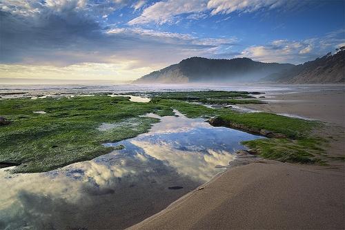 Waddell Beach, California