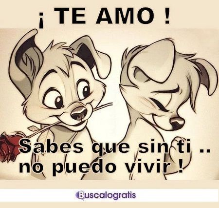 FRASES de AMOR muy LINDAS... #frases #amor #frasesdeamor #buscalogratis #frasesromanticas #mensajesdeamor