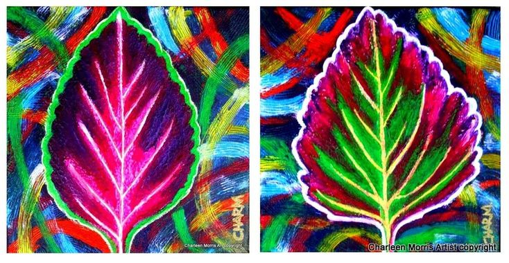Coleus 1  Everchanging moods by Charleen Morris