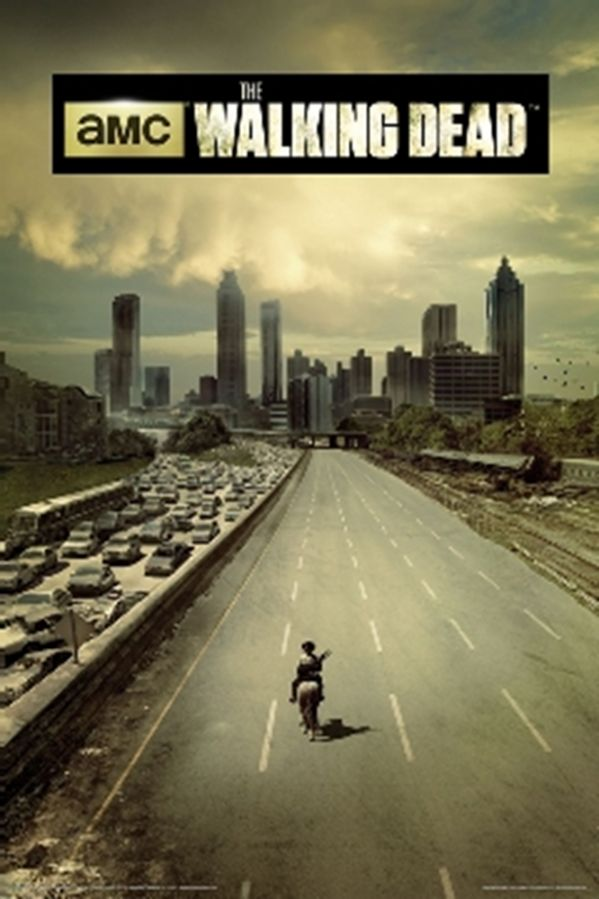Walking Dead Highway Poster