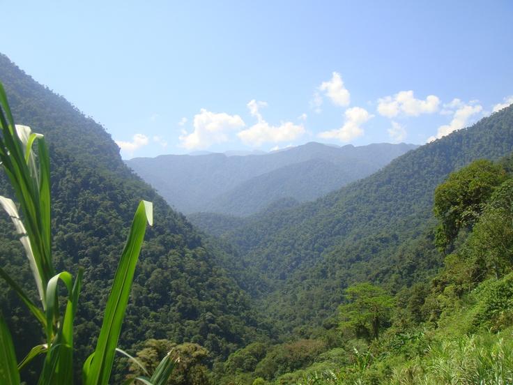 Vue sur la Sierra Nevada de Santa Marta