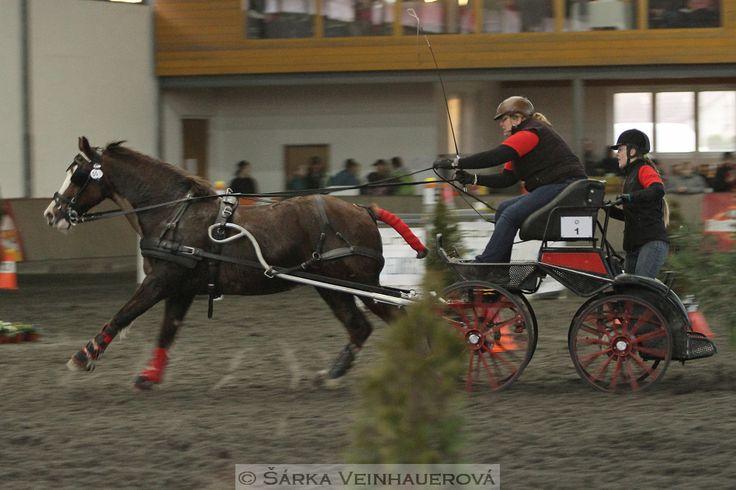 Zimní Jezdecký pohár spřežení 2016 - Hradištko