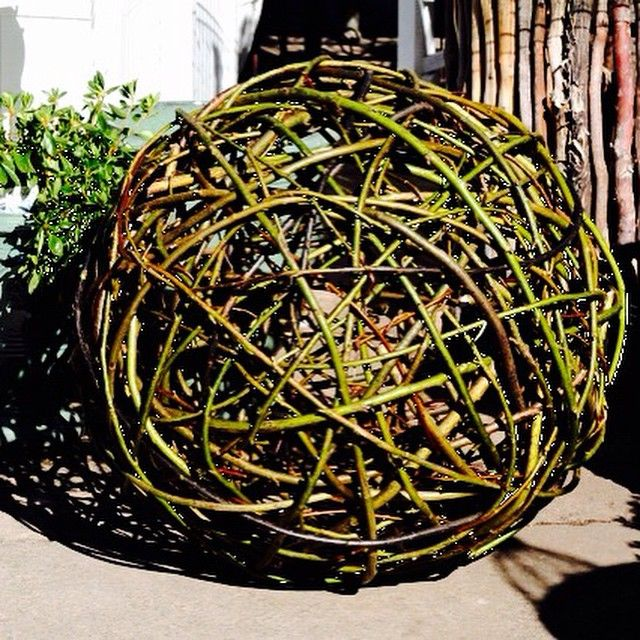 Latest offering ..... @thepottingshedbowral  #willow #ball #garden #sculpture #gardensculpture ...... I love #weaving