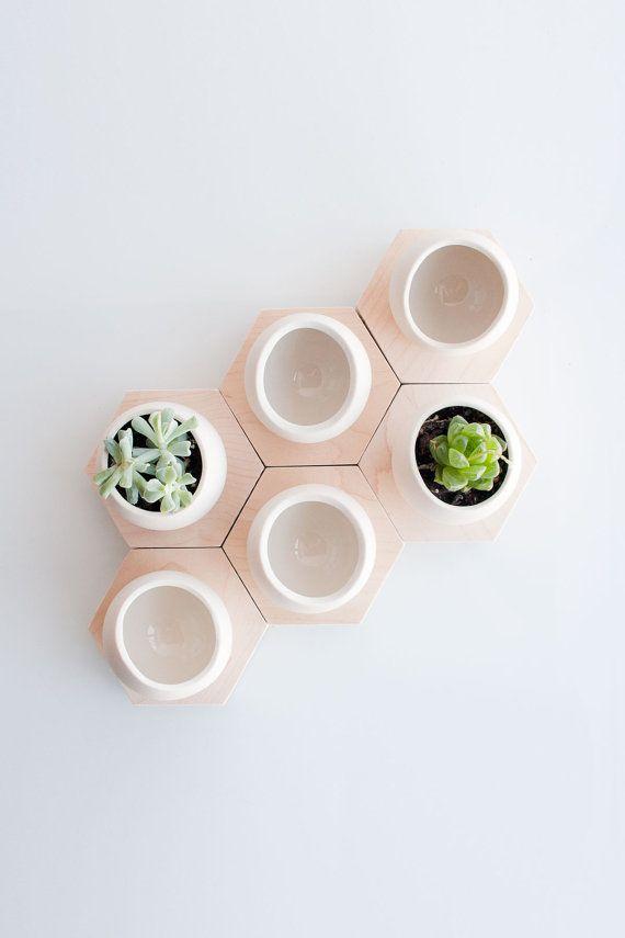 Spora hexagonale par lightandladder sur Etsy