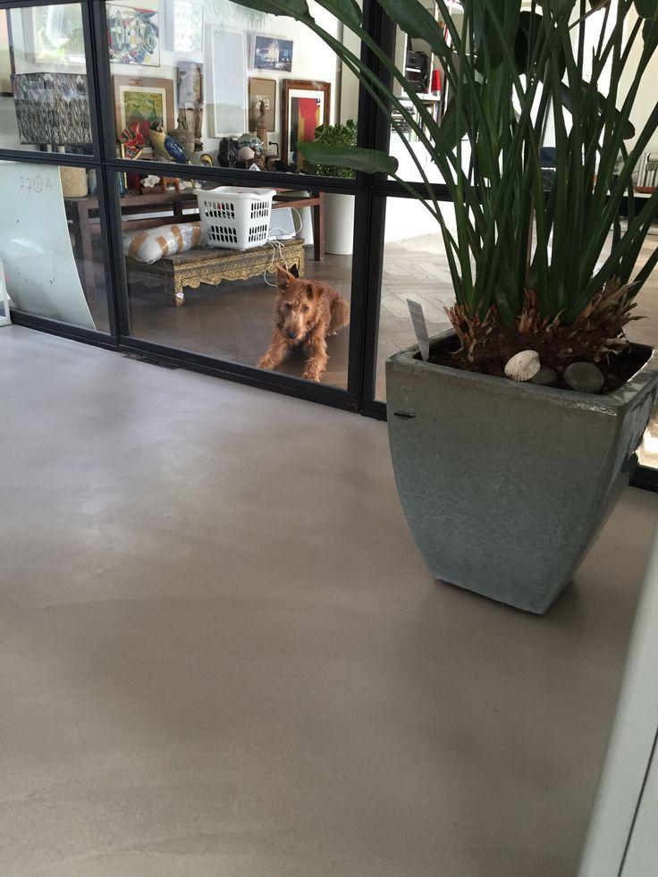 Pandomo Floor in RAL1019 uitgevoerd door Vloer en Zo. Project in St. Pancras.