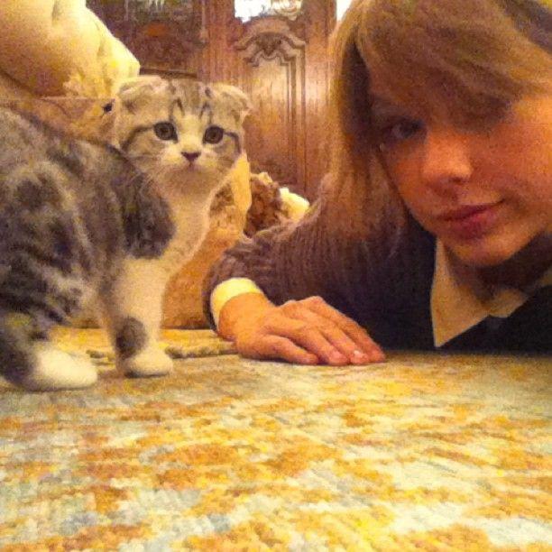 Cat lady.