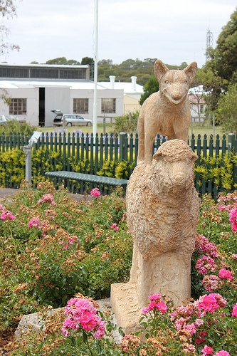 With Casterton claiming to the the birthplace of the Kelpie, this statue is along the main street