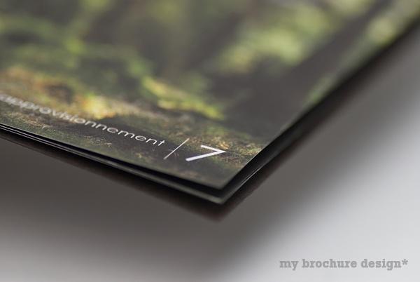 brochure title ideas
