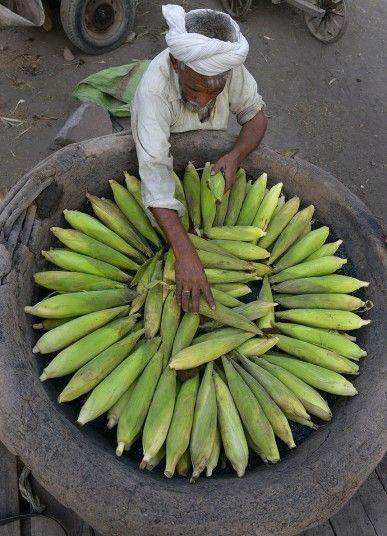 A Pakistani vendor loads roasted corn onto a handcart in Lahore