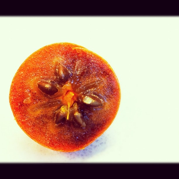 When To Pick Asian Persimmons - Porn Galleries-4060