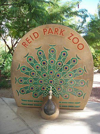 Reid Park Zoo, Tucson, Arizona - I need to make a trip down there.