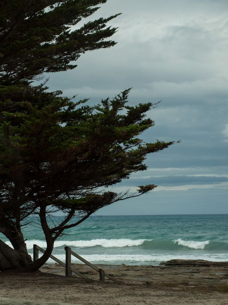 Apollo Bay, Australia | by Shane Zundel -- my childhood beach.
