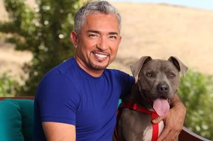 "Cesar Millan photographed with his pet pit bull, Junior, has joined the ""Save Lennox"" campaign"