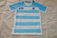 Cheap Argentina Soccer Team Replica Shirt [D279]