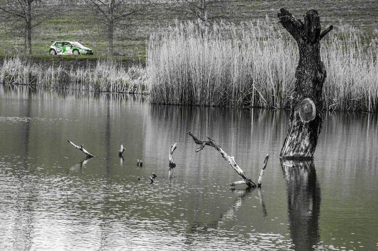 Norbert Herzcig Igor Bacigal Rallye im Skoda Fabia R5 von Baumschlager Rallye & Racing bei der Ózd-Salgó Rallye | Srth.hu