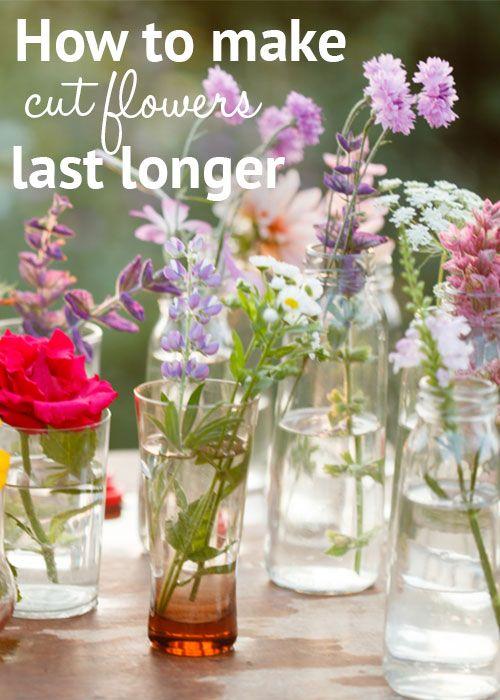 1000 images about flower arrangement on pinterest floral arrangements flower arrangements. Black Bedroom Furniture Sets. Home Design Ideas