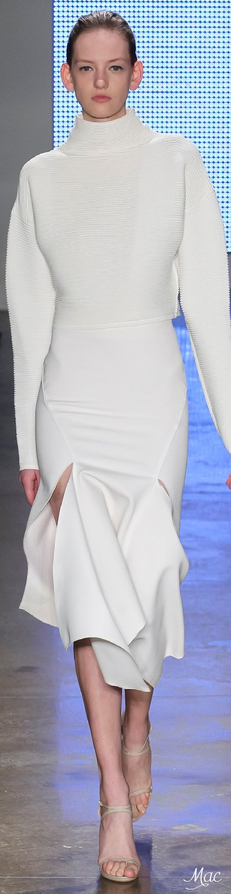 Fall 2015 Ready-to-Wear Dion Lee