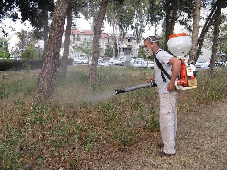 ריסו שטחים פתוחים נגד יתושים