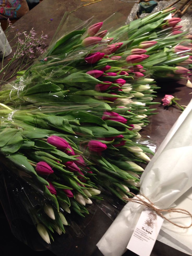Jeg skal pakke tulipan :)