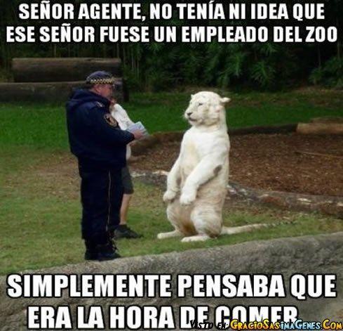 Multas Son Multas #ImagenDelDia