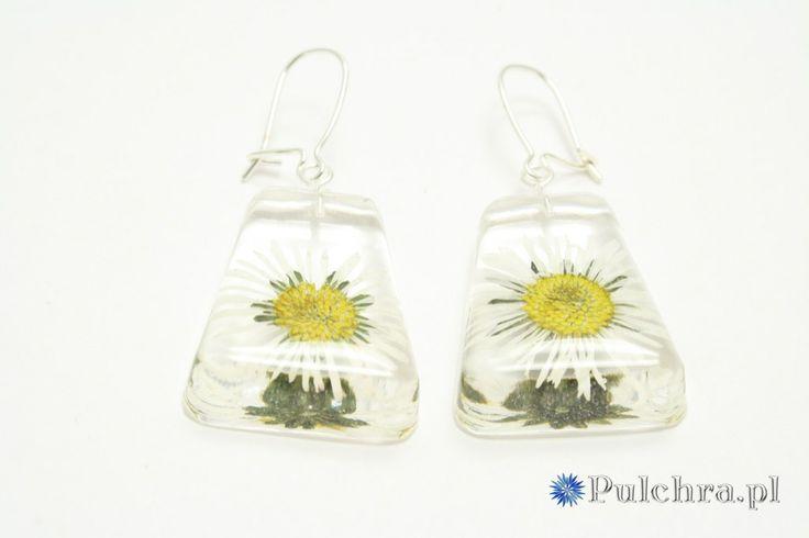 Czworokątne kolczyki z żywicy z suszonymi stokrotkami (srebro) /  Resin earrings with pressed flowers