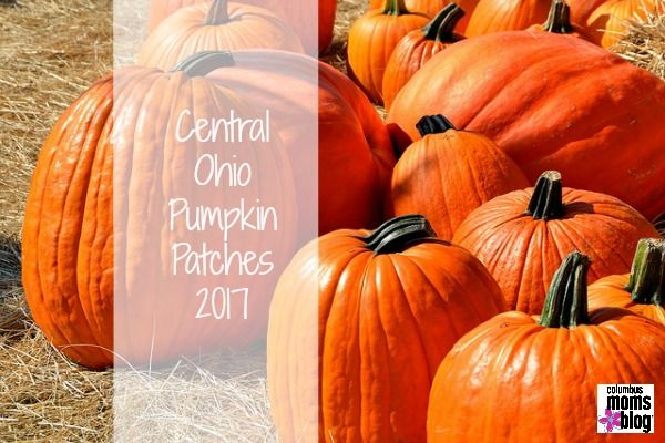 Fall is just around the corner! Because fall = all things pumpkin, Columbus Moms Blog has your round-up of Central Ohio pumpkin patches below. Mark your calendars for some good ol' fashioned family fun! Also, be sure to check out our list of Columbus U-Pick Apple Orchardsand Family-Friendly Fall Festivals. NORTH Freeman's Farm– Galena, Ohio …