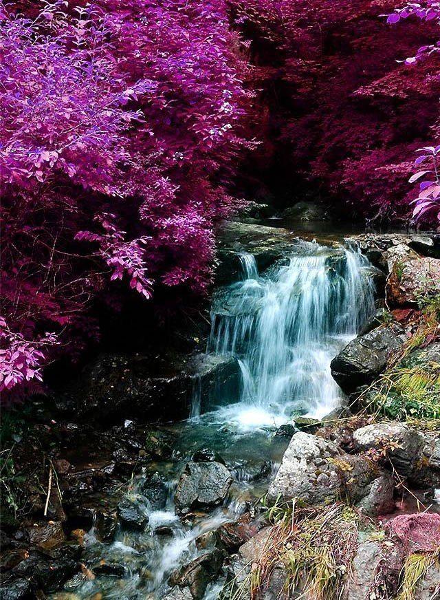 Водопад (640×872)