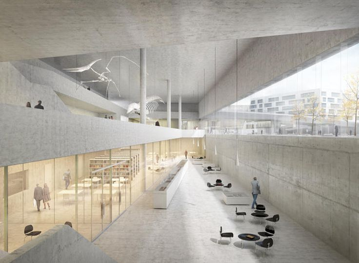 Durisch + Nolli | new museum of natural history basel