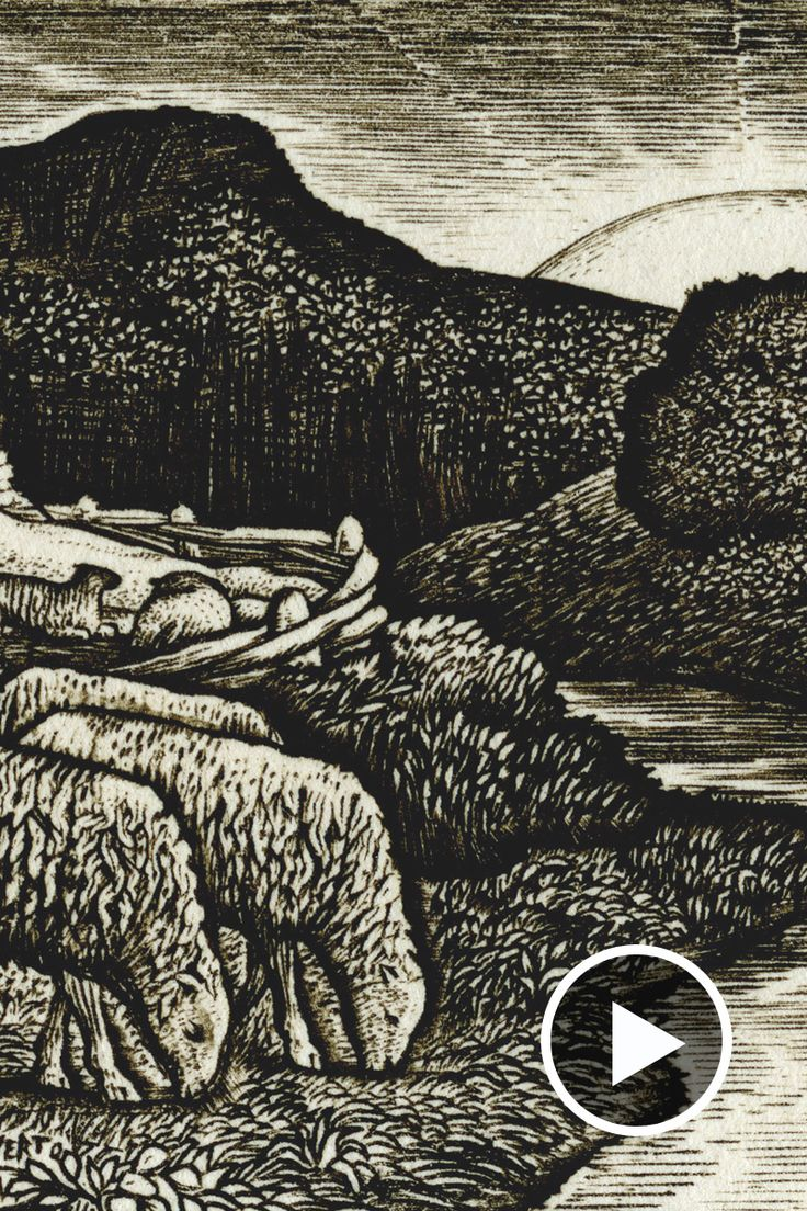 In this week's film we showcase an exquisite portfolio of Edward Calvert engravings and the launch of our Sid Burnard show. Watch it here.
