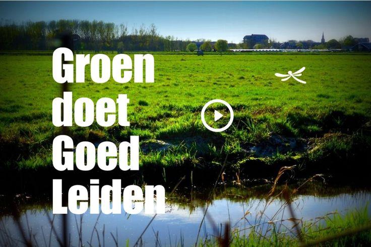 Groen doet Goed - Leiden  een programma op kinderen en hun opvoeders de natuur binnen en buiten de stad op allerlei manieren beleven.