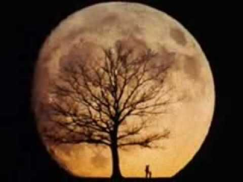 Nick Drake - Pink Moon This song will always be one of my favorites for the simple piano solo in the middle. Beautiful.