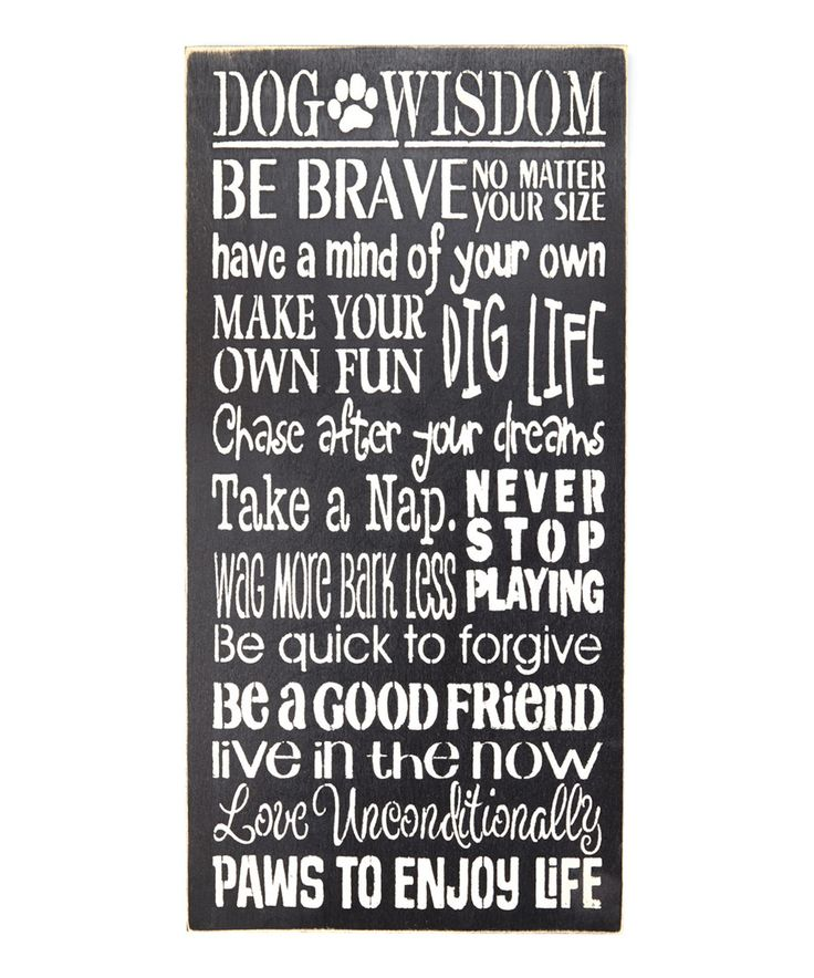 Loving this 'Dog Wisdom...' Wall Sign on #zulily! #zulilyfinds
