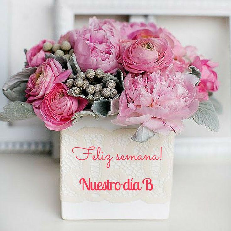 Feliz semana #felizlunes #happymonday #felizsemana #happyday #beautifulday #nuestrodiab