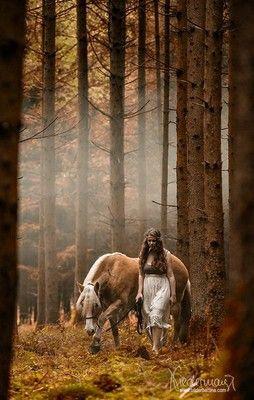 Special - Pferdefotografie, Hundefotografie, Fotografie Bettina Niedermayr Pferde - Mensch & Pferd - Hunde- Portrait - Stallschilder - Kalender, Pferdekalender, Haflingerkalender mit Kohlfuchs Liz. Steiermark