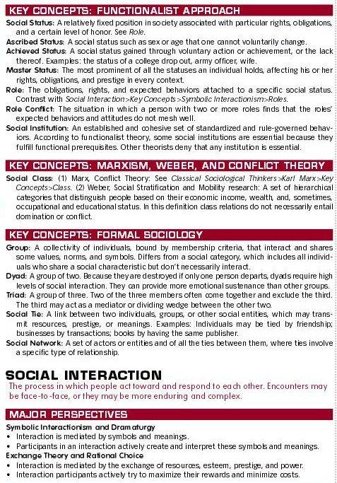 social interaction social structure Social structure and social interaction literature & language coursework.