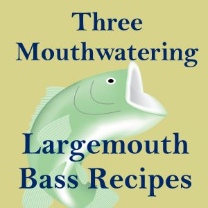 Largemouth bass are a blast to catch, in part because of their meaty muscular bodies. This same feature also makes them great for eating. Their meat is firm and their bones are easy to remove. Their taste is mild, but still flavorful. I hope you enjoy these three great largemouth bass recipes and ma