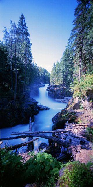 ゝ。Silver Falls Trail.。Mount Rainier National Park, Washington State.。