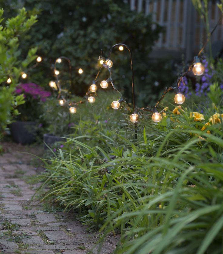 The season's favorite lights, only at terrain.