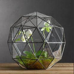 A repurposed #antique #chandelier creates this awesome #terrarium. #recycling: Geodesic Terrariums, Geode Terrariums, Ideas, Restoration Hardware, Glasses, Plants, Gardens, Restorationhardware, Stained Glass