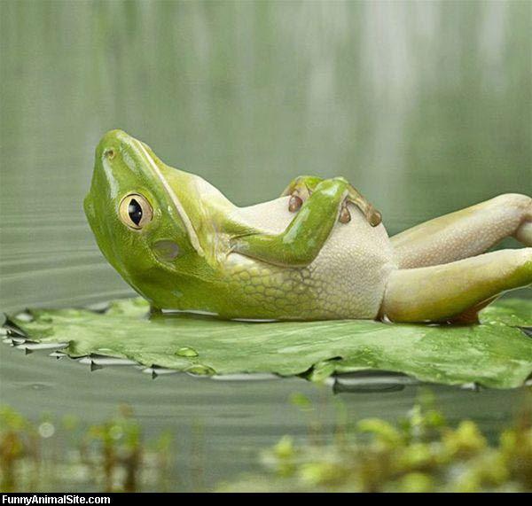 relaxao