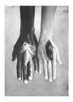 Fotokunst | Foto kunst | Posters met zwart wit fotos | Desenio.nl
