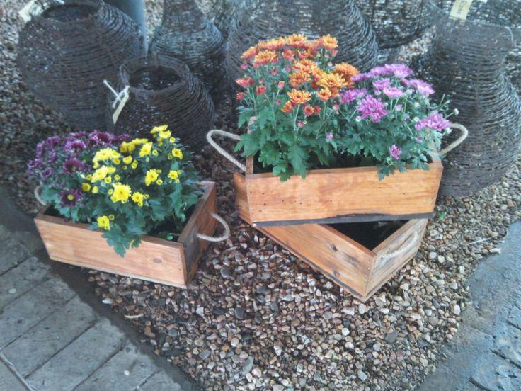 Parys rustic décor - Plant boxes