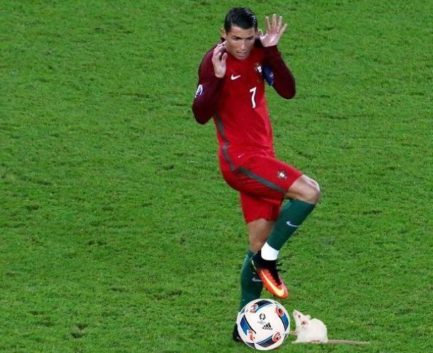 New CR7 Christiano Roanaldo Memes Euro 2016