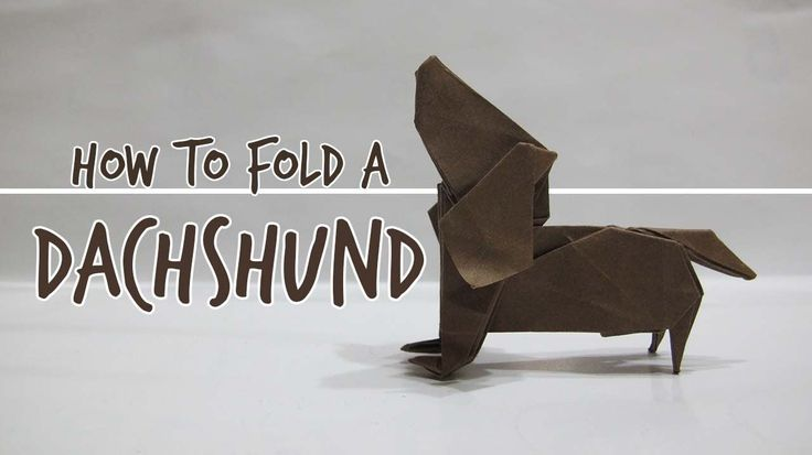 The video you're about to see will teach you how to fold an origami dachshund dog with your own two hands! This is pretty amazing. If you like dachshunds and have a spare piece of paper, this is definitely worth trying! This video takes you through step by step and shows you how to fold…♥•♥•♥
