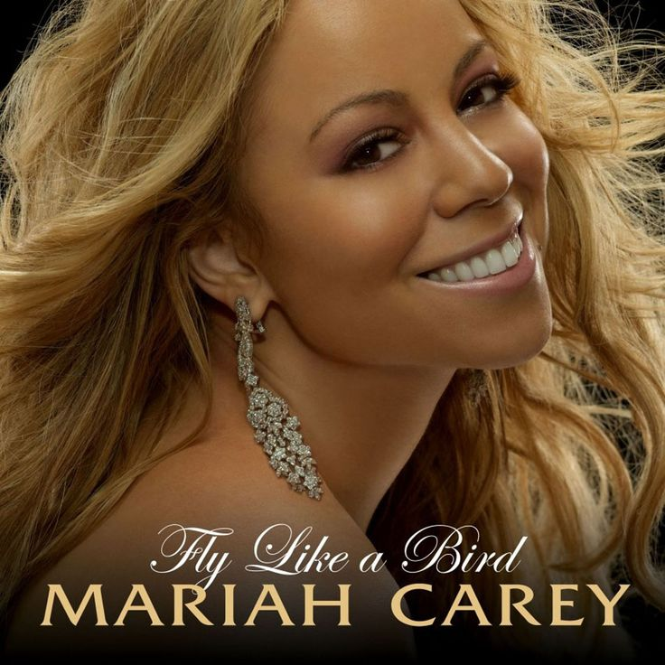singles in carey Uk singles chart records and statistics mariah carey 219 weeks do count towards his total as they are classed together in the guinness book of hit singles.