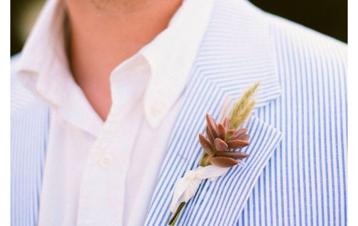 Boutonnière featuring a succulent and sea grass.